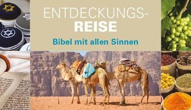 """Tesaserbild für den Artikel Wanderausstellung """"Expedition Bibel"""""""
