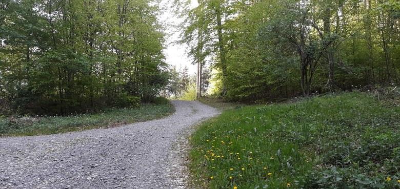 Der Weg in die Mitte / Lauf- Gehexerzitien im Schweigen